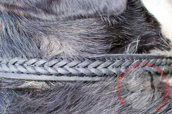 Unique Decoration of Leather Dog Collar - Fascinating Braid