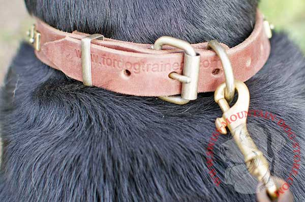 Durable Brass Ring Grants Secure Leash Fastening