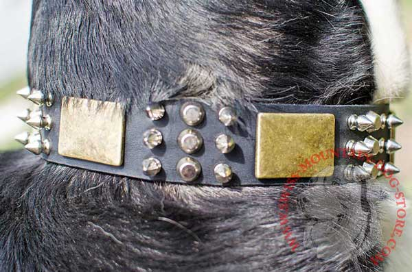Decoration of Leather Dog Collar - Cones, Spikes and Plates