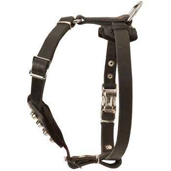 Leather Swiss Mountain Dog Puppy Harness for Comfy Walking