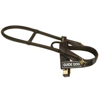 Swiss Mountain Dog Guide Harness Leather for Dog Assistance