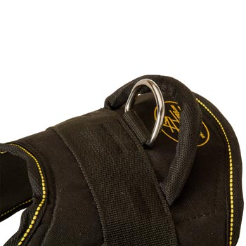 Heavy Duty Handle of Swiss Mountain Dog Harness