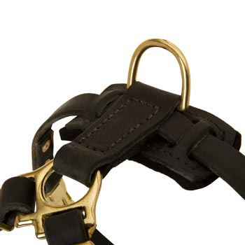 D-ring on Leather Swiss Mountain Dog Harness for Puppy Training
