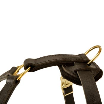 Corrosion Resistant D-ring of Swiss Mountain Dog Harness