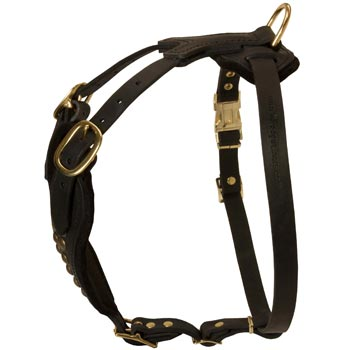 Easy Adjustable Leather Swiss Mountain Dog Harness