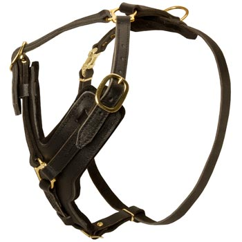 Comfortable Y-Shaped Leather Harness for Swiss Mountain Dog Attack  Training