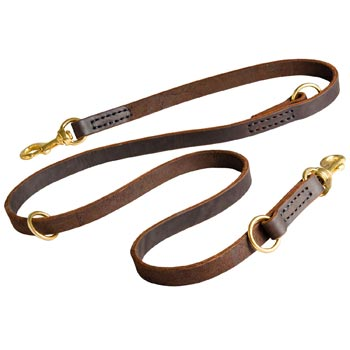 Leather Leash for Swiss Mountain Dog Everyday Walking