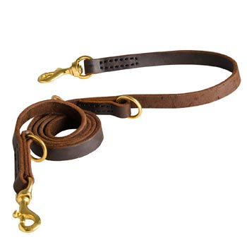 Strong Leather Leash for Swiss Mountain Dog Successful Training