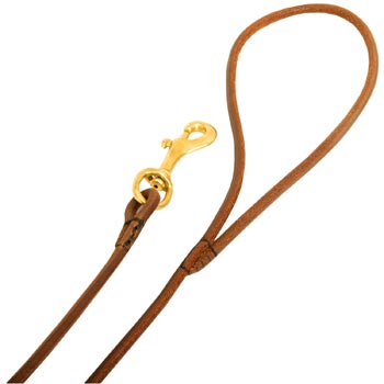 Leather Swiss Mountain Dog Leash with Comfy Round Hnadle