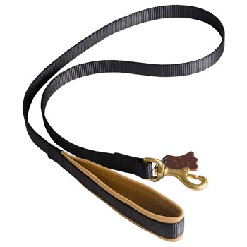 Special Nylon Dog Leash Comfortable to Use for Swiss Mountain Dog
