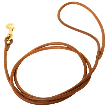 Leather Round Leash for Swiss Mountain Dog Elegant Look