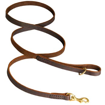 Classic Stitched Leather Swiss Mountain Dog Leash
