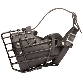 Leather Swiss Mountain Dog Muzzle Padded Metal Basket