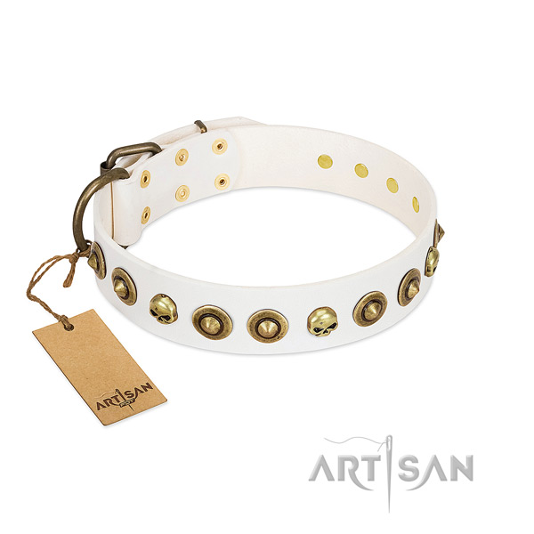 Full grain leather collar with top notch studs for your doggie