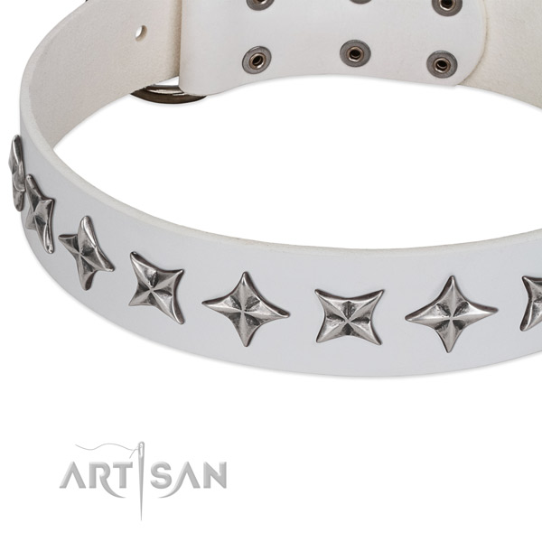 Daily use decorated dog collar of top quality genuine leather