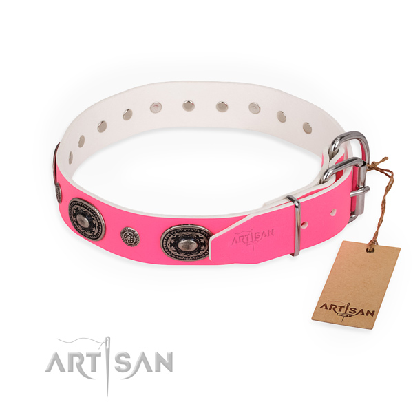 Everyday walking embellished dog collar with rust-proof fittings