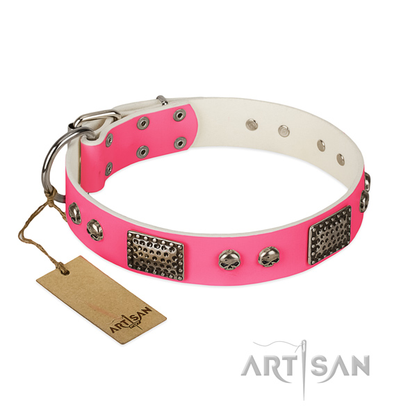 Easy wearing leather dog collar for walking your four-legged friend
