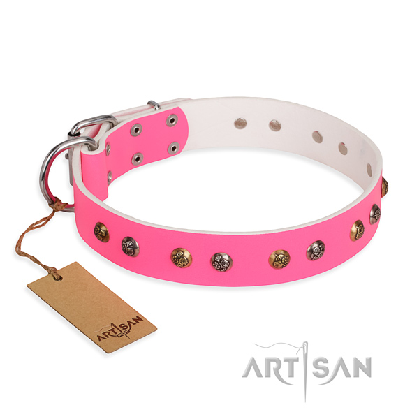 Everyday use comfortable dog collar with rust-proof fittings