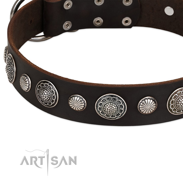 Full grain leather collar with strong hardware for your handsome canine