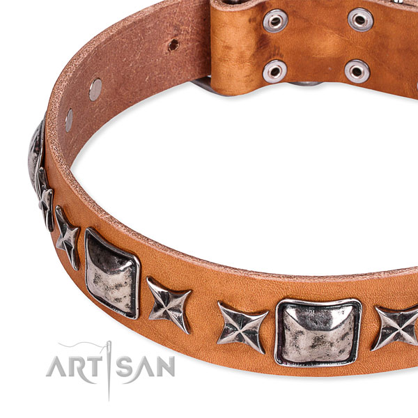 Handy use decorated dog collar of quality full grain natural leather