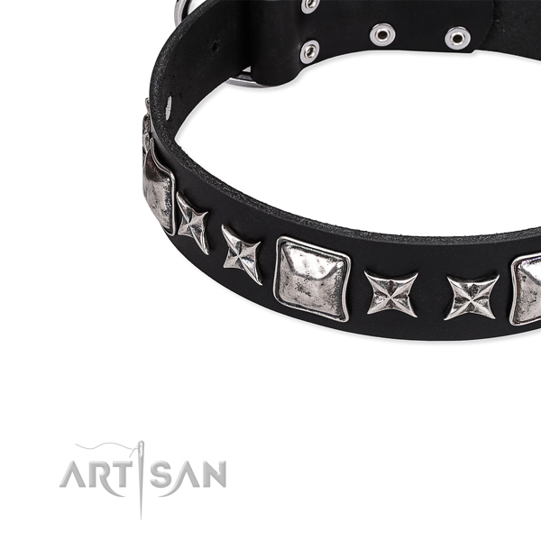 Stylish walking embellished dog collar of best quality full grain genuine leather