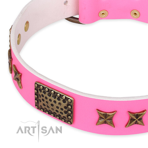 Full grain leather collar with durable buckle for your beautiful doggie