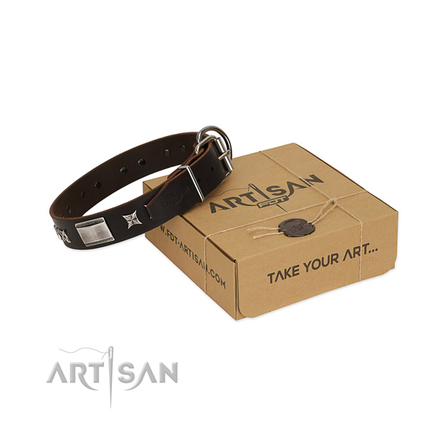 Exceptional collar of full grain natural leather for your impressive pet
