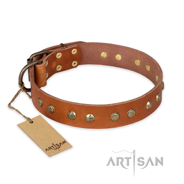 Incredible full grain natural leather dog collar with durable D-ring