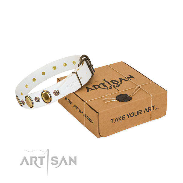 Easy wearing soft to touch full grain natural leather dog collar