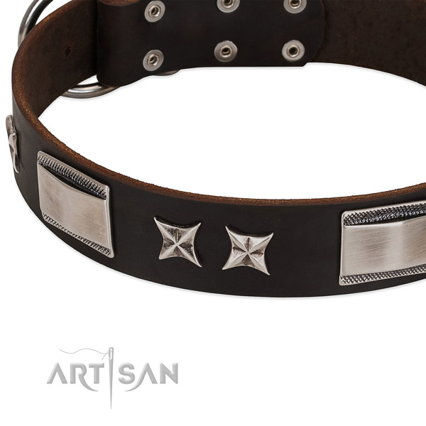 Top notch collar of full grain genuine leather for your attractive dog