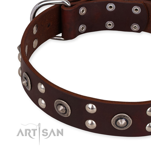 Full grain natural leather collar with corrosion resistant hardware for your impressive canine