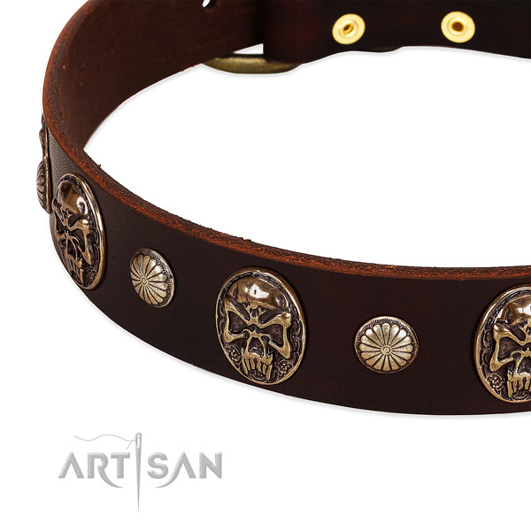 Full grain leather dog collar with decorations for stylish walking