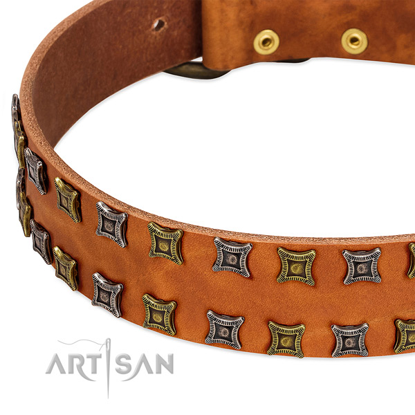 High quality natural leather dog collar for your beautiful dog