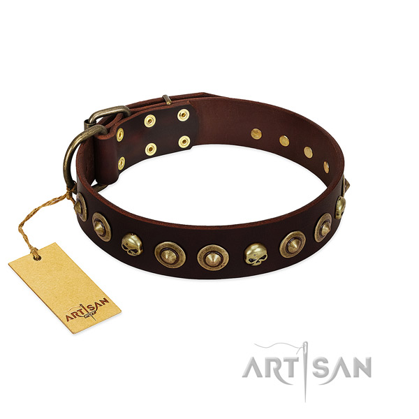 Genuine leather collar with unique adornments for your doggie