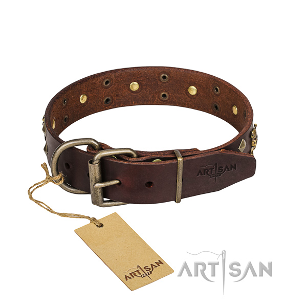 Walking dog collar of high quality leather with adornments