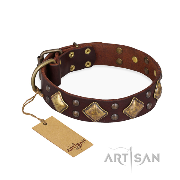 Basic training awesome dog collar with rust resistant hardware