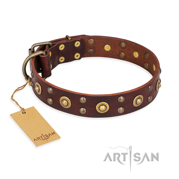 Stunning leather dog collar with rust-proof D-ring