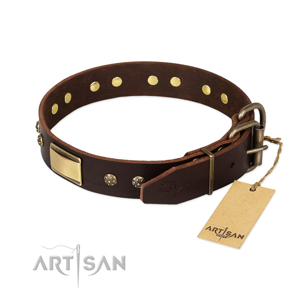 Extraordinary genuine leather collar for your doggie