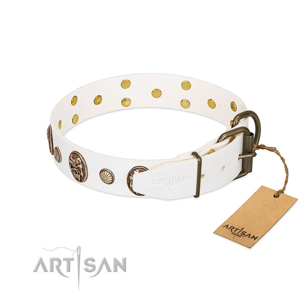 Durable traditional buckle on full grain genuine leather collar for fancy walking your canine