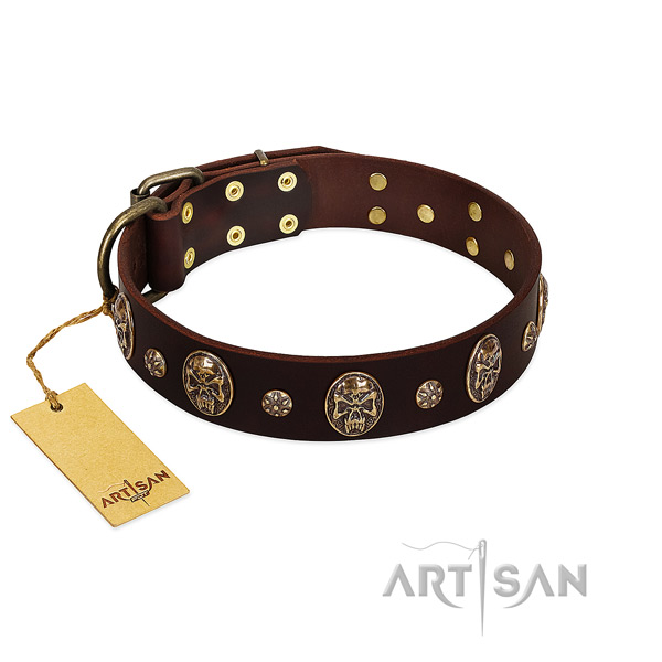 Exquisite full grain leather collar for your dog