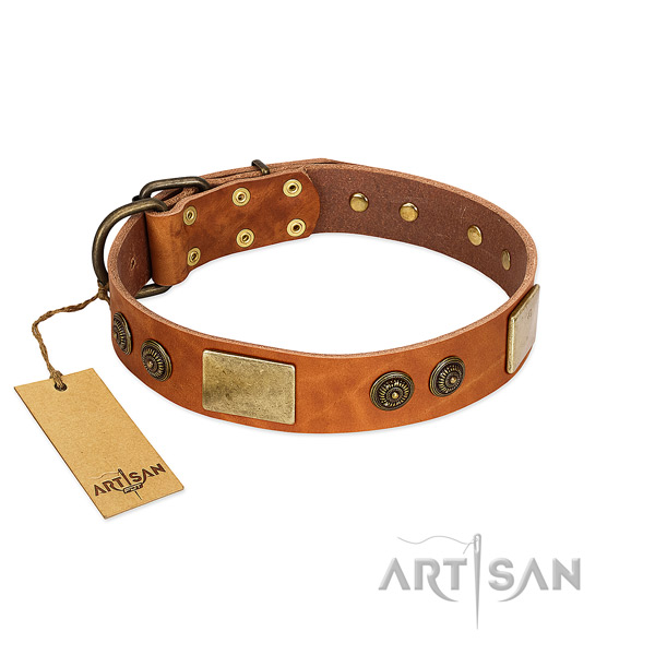 Easy adjustable leather dog collar for everyday use