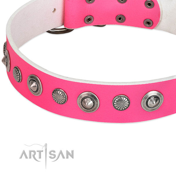 Genuine leather collar with strong fittings for your beautiful dog