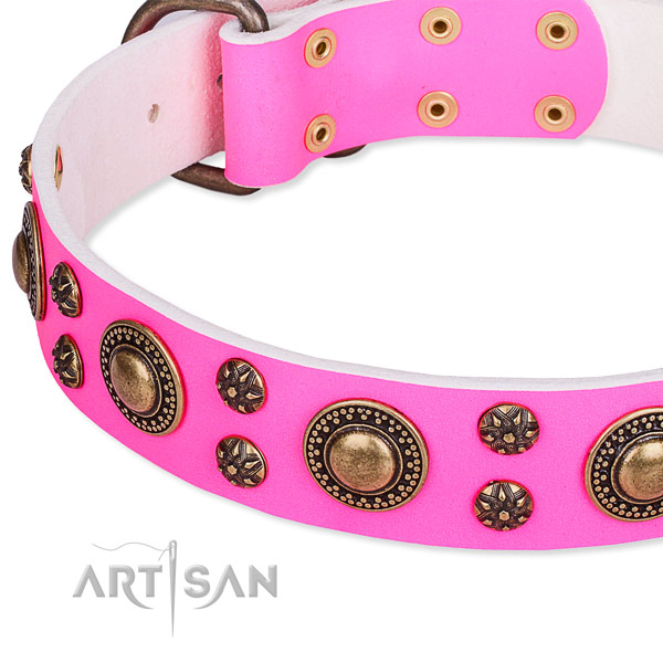 Comfy wearing adorned dog collar of top quality leather