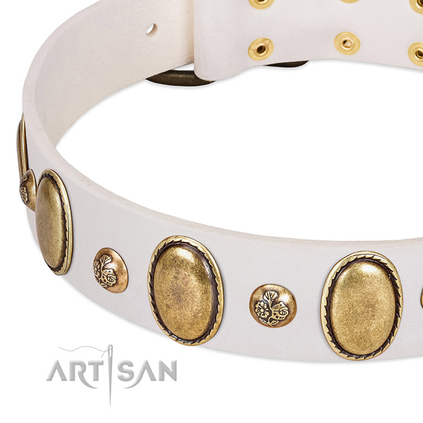 Leather dog collar with significant studs