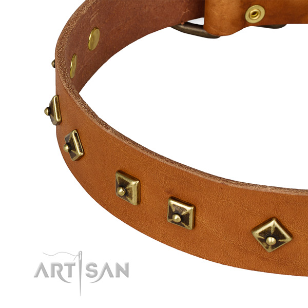 Top notch natural leather collar for your impressive four-legged friend