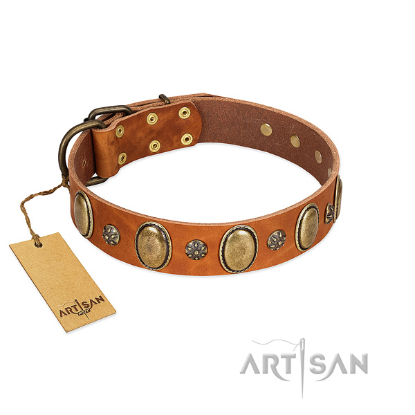 Comfortable wearing best quality genuine leather dog collar with adornments