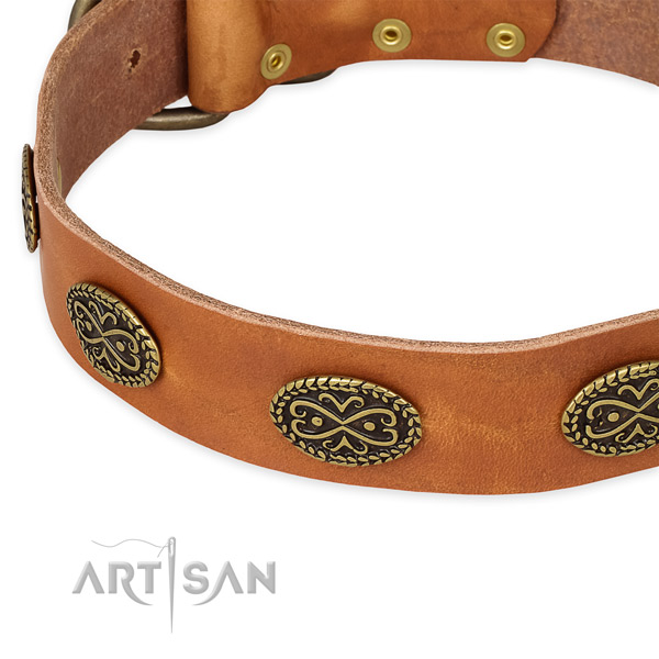 Stylish full grain natural leather collar for your impressive dog