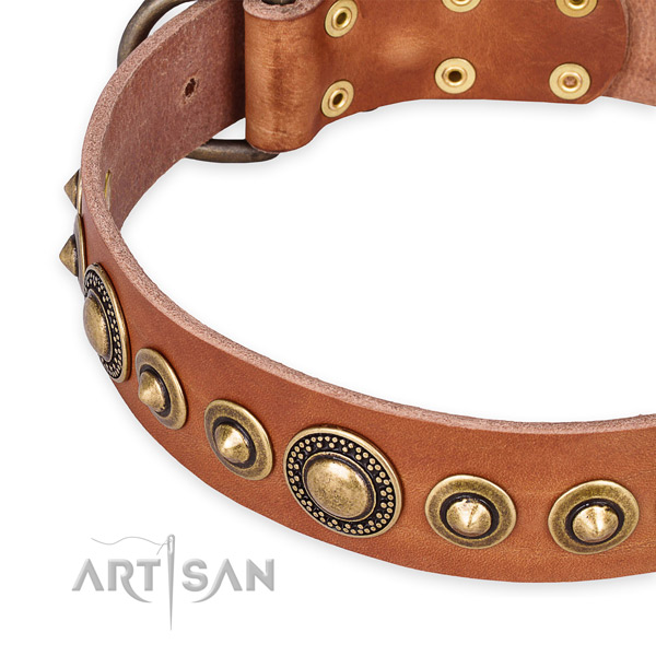Strong natural genuine leather dog collar handmade for your lovely canine