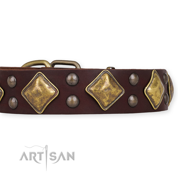 Genuine leather dog collar with incredible rust resistant decorations