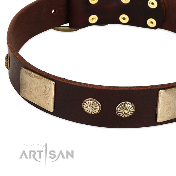 Corrosion proof decorations on genuine leather dog collar for your four-legged friend